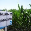 Хербицидите на СУММИТ АГРО с отличен ефект на демо полетата на Аграрен Университет-Пловдив